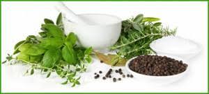 Herbodietética Kamut