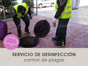 La Encina Servicios Integrados Salamanca