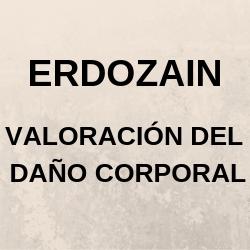 Erdozain Valoracion Del Daño Corporal