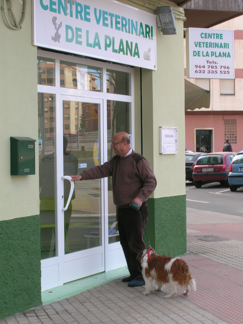 Centre Veterinari De La Plana 10