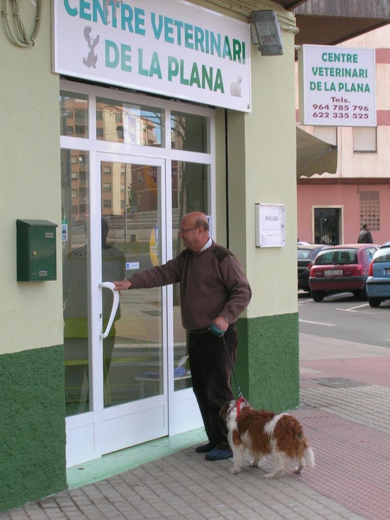Centre Veterinari De La Plana 42