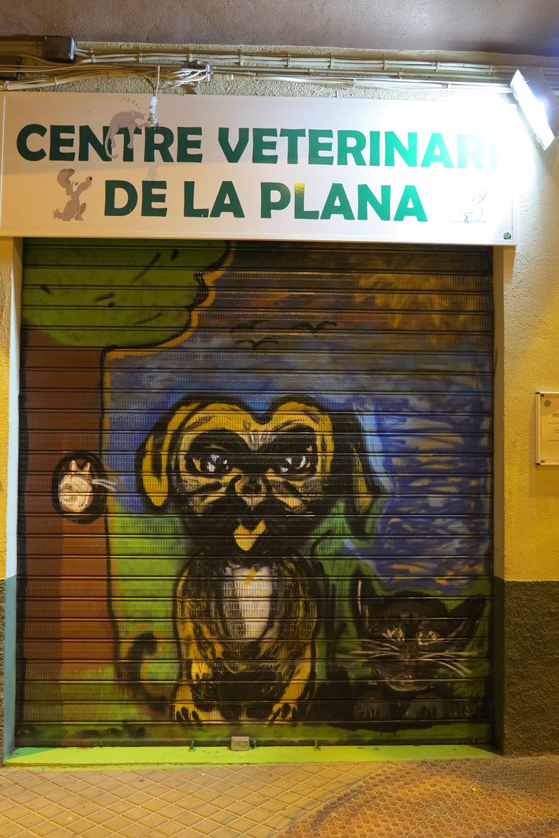 Centre Veterinari De La Plana 6