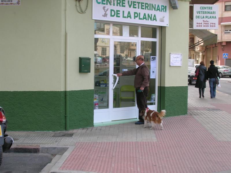 Centre Veterinari De La Plana 9
