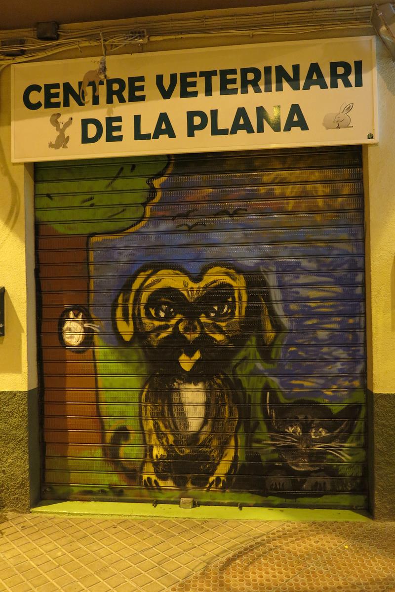 Centre Veterinari De La Plana 40