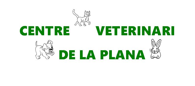 Centre Veterinari De La Plana