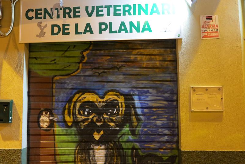 Centre Veterinari De La Plana 7