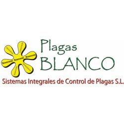 Pinturas Blanco Sistemas Integrales De Control De Plagas