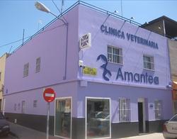 Imagen de Clínica Veterinaria Amantea