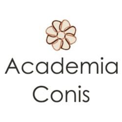 Academia Conis