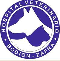 HOSPITAL VETERINARIO BODION ZAFRA