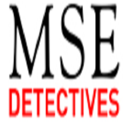 MSE Detectives
