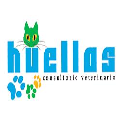 Consultorio Veterinario Huellas