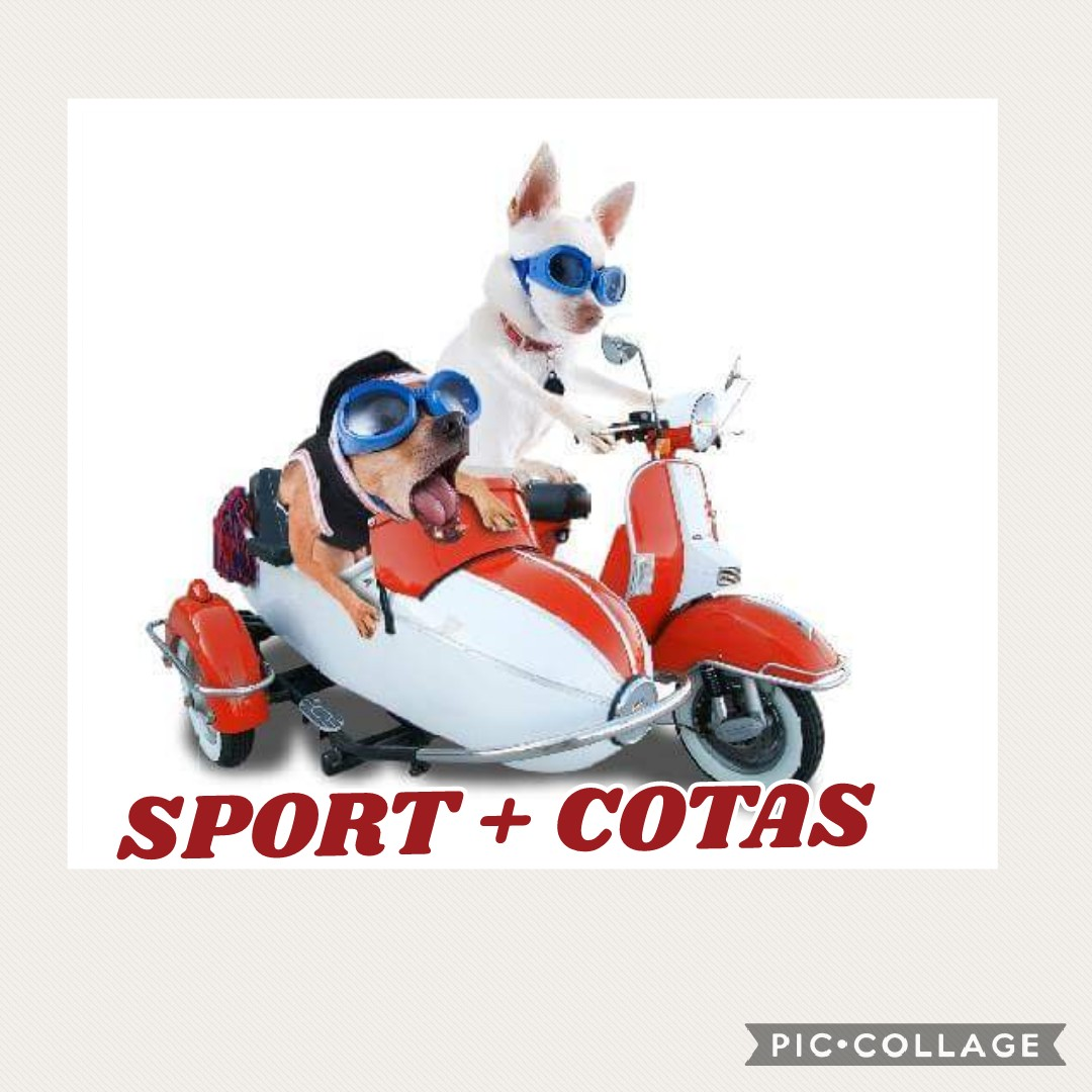 Sport + Cotas