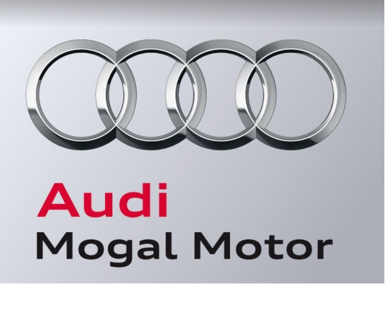 Audi Mogal Motor