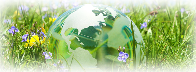 Imagen de Planes Ambiental S.L.