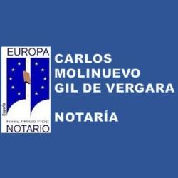 Carlos Molinuevo Gil De Vergara