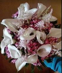 Floristas Clivia