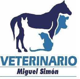 Veterinario Miguel Simón