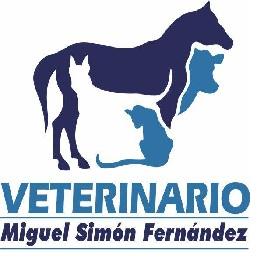 VETERINARIO Miguel Simón Fernández