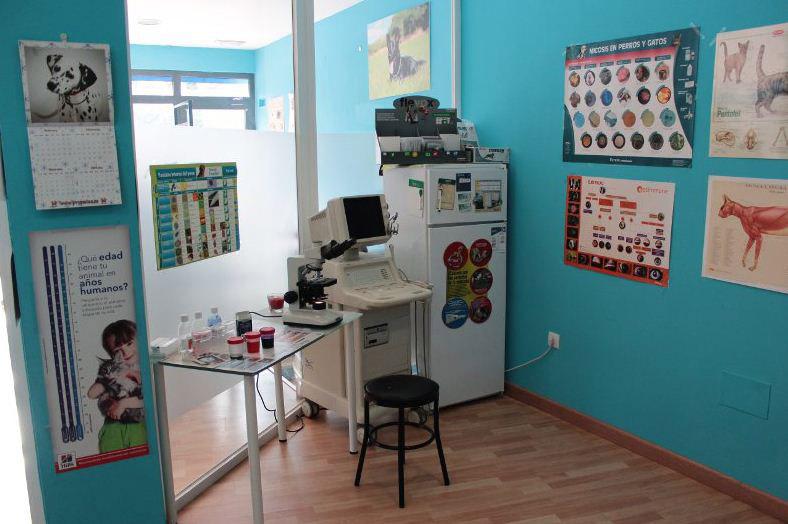 Centro Veterinario Animalia Valladolid