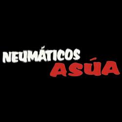 Neumáticos Asua