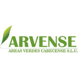 ARVENSE