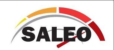 TALLERES SALEO - KRANE S. L. - CONCESIONARIO OFICIAL PALFINGER