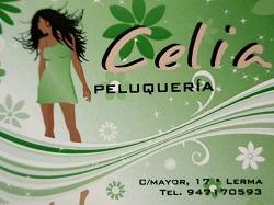 Peluquería Celia
