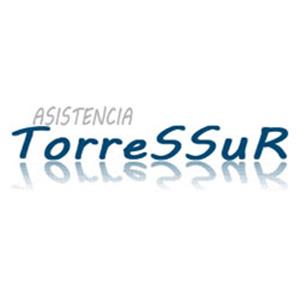 Asistencia Torressur
