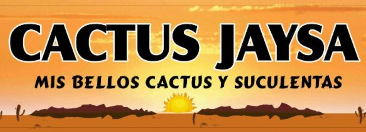 CACTUS JAYSA