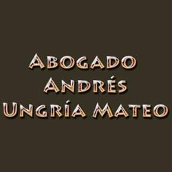 Abogado Andrés Ungría Mateo