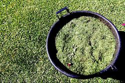 Imagen de Jardinería Costa Verde