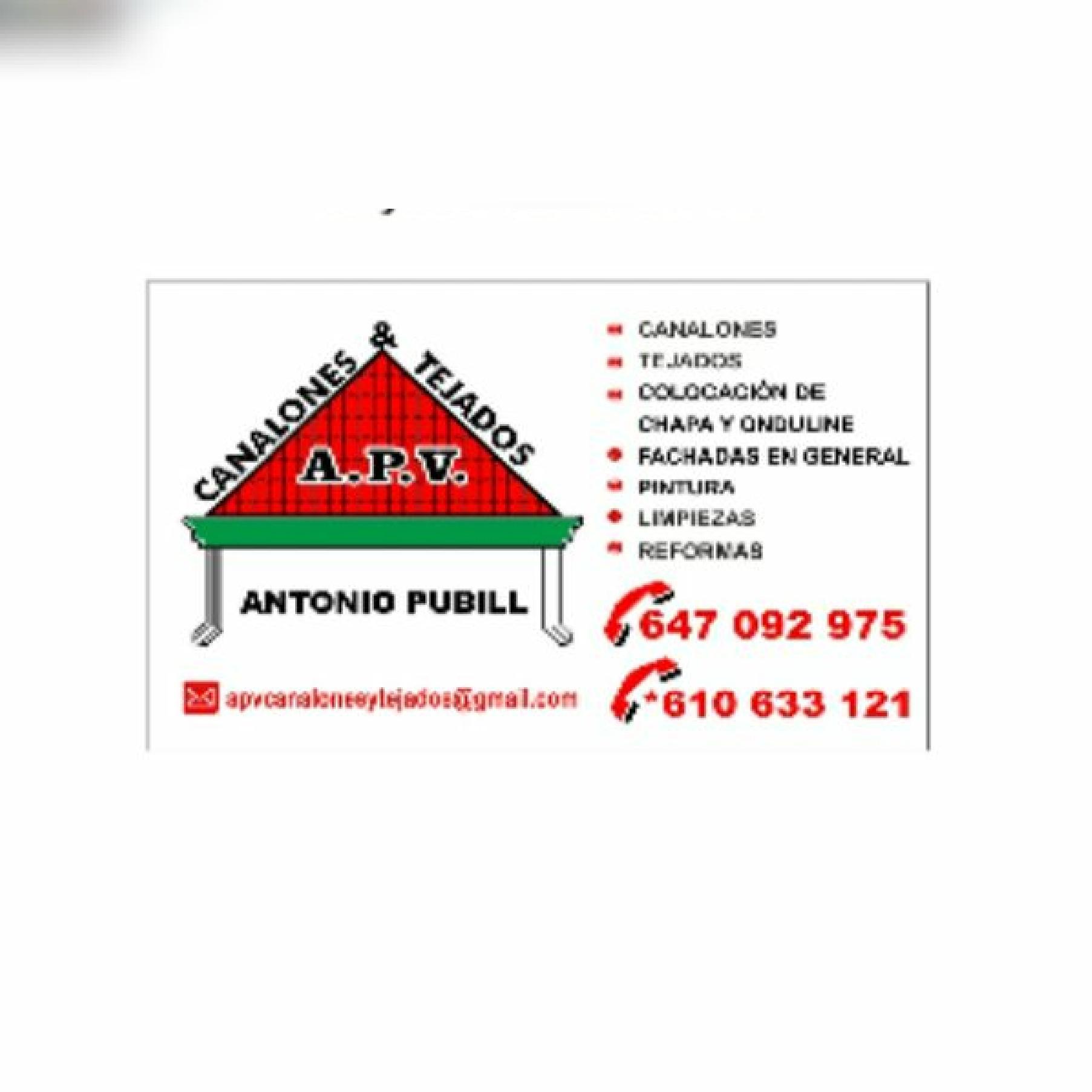A.P.V. Canalones ,Tejados & Trabajos Verticales