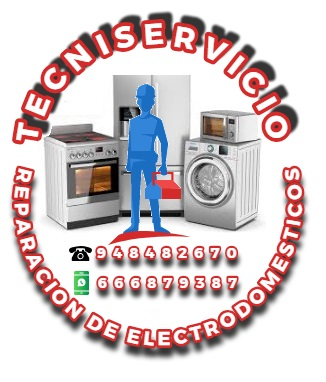 TECNISERVICIO