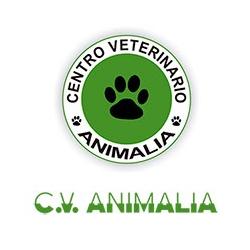 Centro Veterinario Animalia