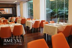 Imagen de Restaurante Ameyal