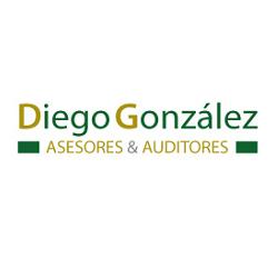 Diego González Auditores Asociados S.L.