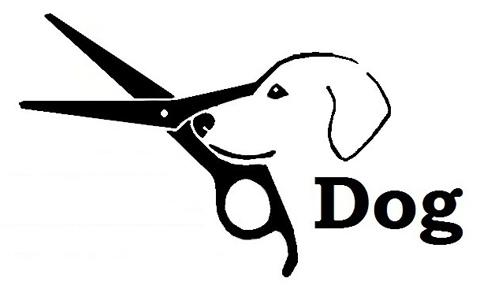 Dog La Tienda De Tu Mascota