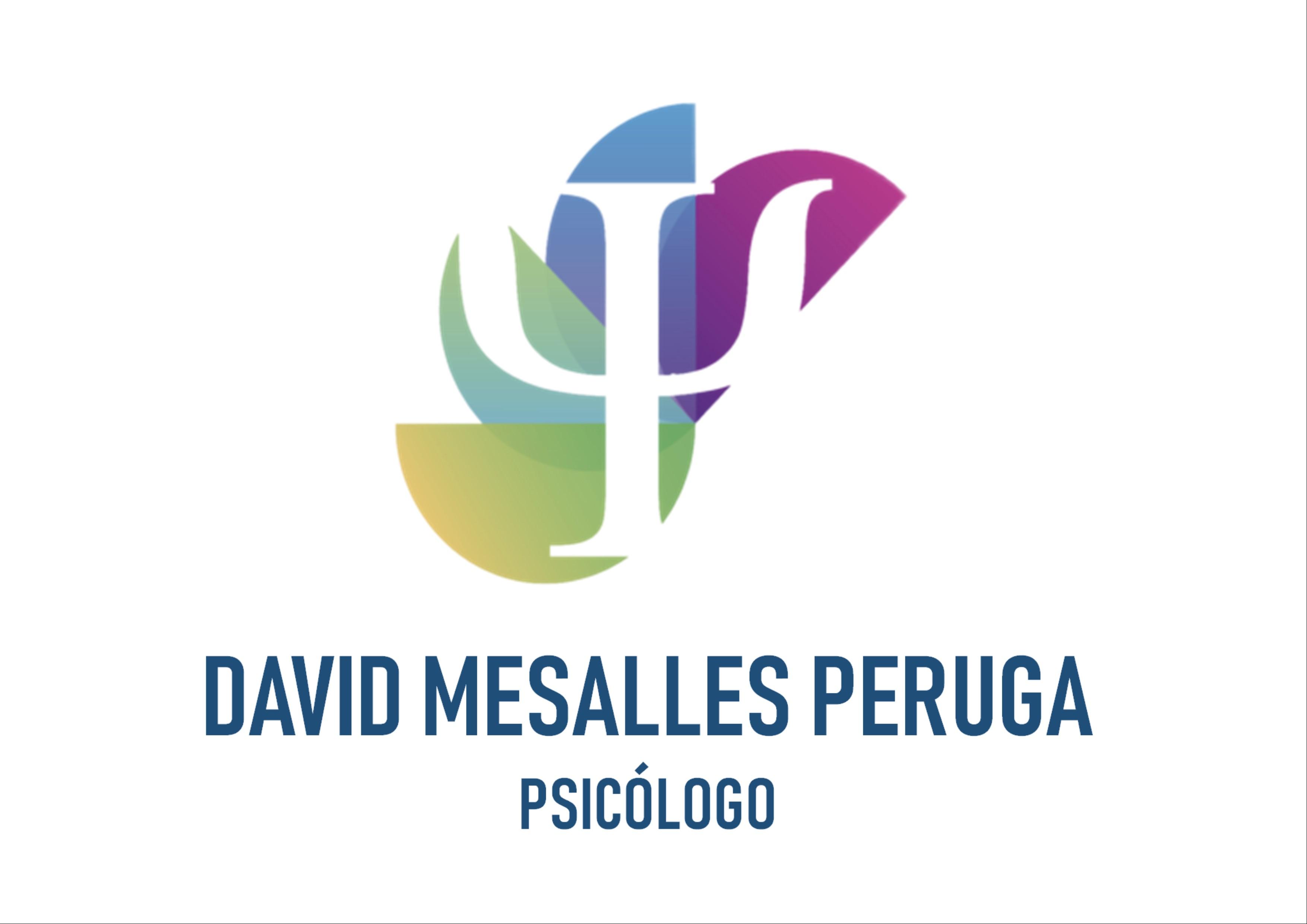 David Mesalles Psicólogo Huesca
