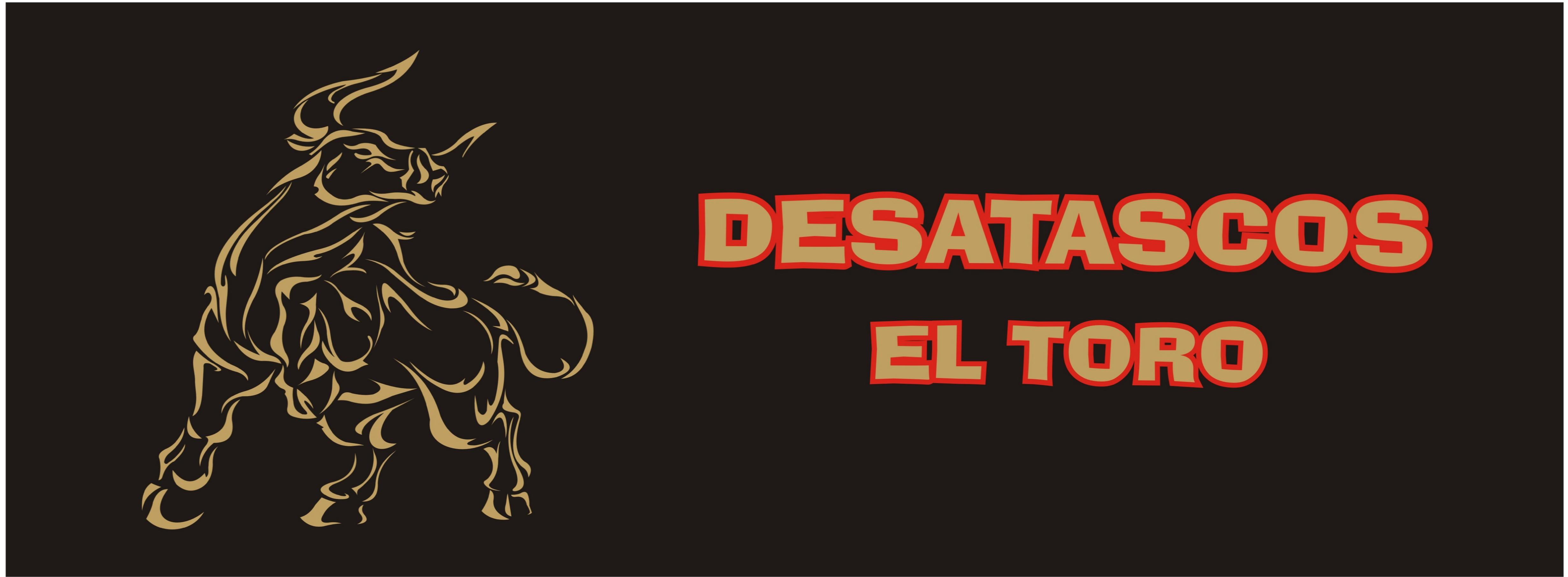 Desatascos El Toro