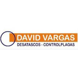 Desatascos David Vargas