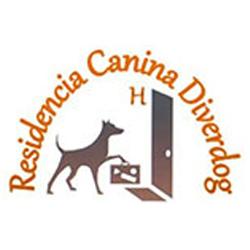Residencia Canina Diverdog