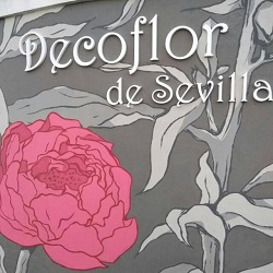 Decoflor De Sevilla - Floristería Montequinto