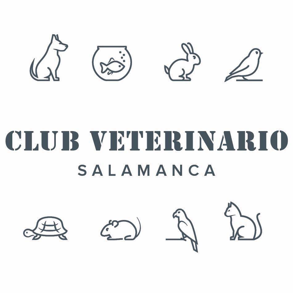 CLUB VETERINARIO SALAMANCA