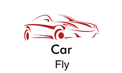 CAR FLY PRIVATE TRANSFERS MALAGA AIRPORT TAXIS: SERVICIOS Y PARADAS