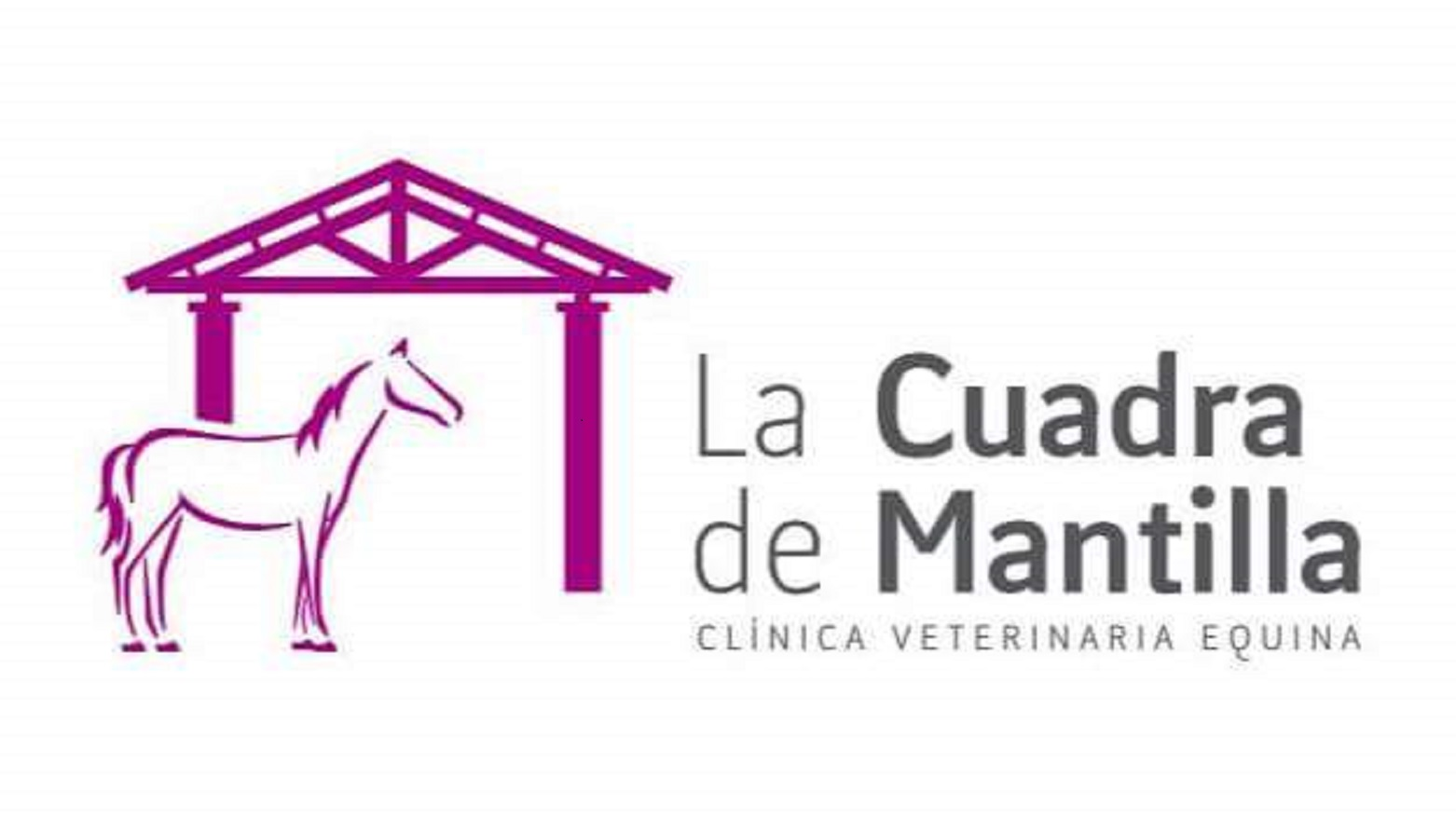 La Cuadra de Mantilla Clinica Veterinaria Equina