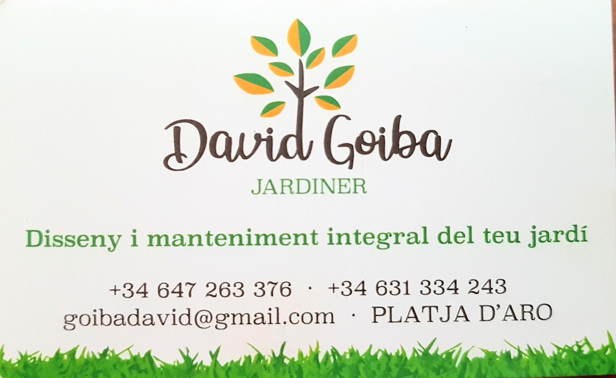 Jardiner David Goiba