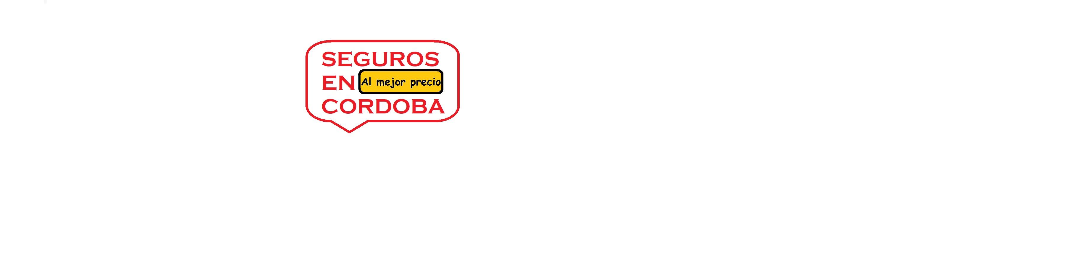 Seguros en Cordoba - Agencia de Seguros - Corredores de Seguros - AL MEJOR PRECIO GARANTIZADO