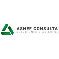 Asnef Consulta