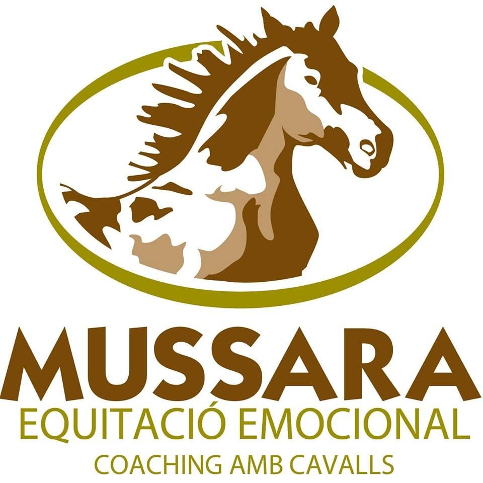 Mussara Equitació Emocional I Coaching Amb Cavalls